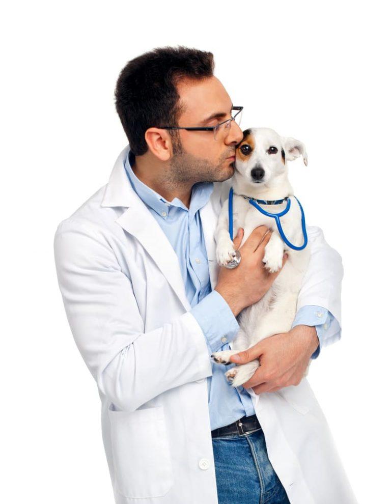 Centro veterinario la vinuela en Cordoba