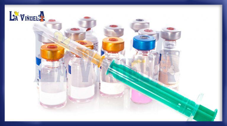 Vacuna leishmaniosis